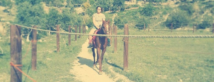 Ceylan Pınarı At Çiftliği is one of Locais salvos de Fatih.