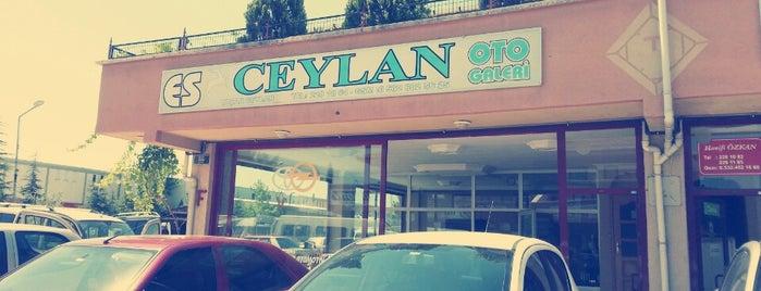 Es Ceylan Otomotiv is one of Tempat yang Disukai Ekrem.