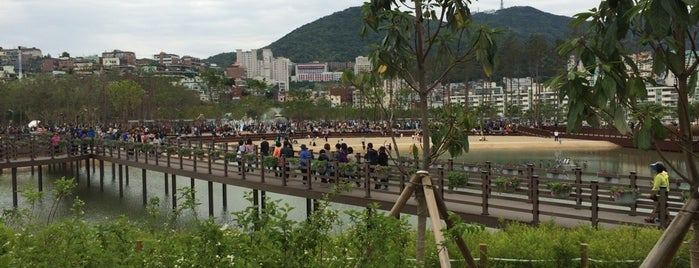 Busan Citizens Park is one of South Korea 🇰🇷.