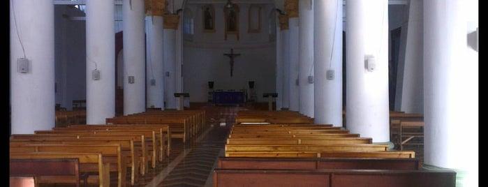 Iglesia San Francisco is one of Rancagua.