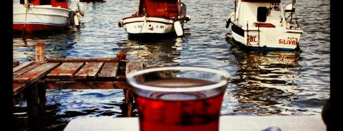 Tarihi Çınaraltı Aile Çay Bahçesi is one of Baharın tadına demli bir çayla varın.