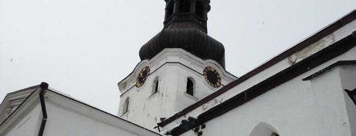 Tallinna Toomkirik is one of Tallinn.