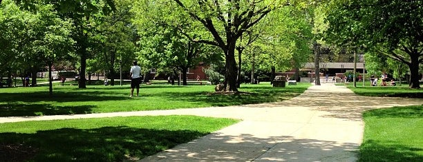 The Quad is one of BloNo.