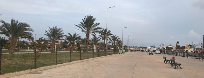 Taşucu Marina is one of สถานที่ที่ Melike ถูกใจ.