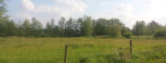 Landschapspark Groene Velden is one of สถานที่ที่ Vincent ถูกใจ.