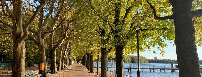 Greenwichpromenade is one of Berlineeer.
