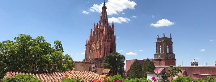 La Única is one of San Miguel de Allende.