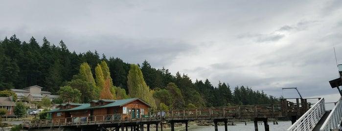 Deer Harbor Marina is one of Orte, die Michael gefallen.