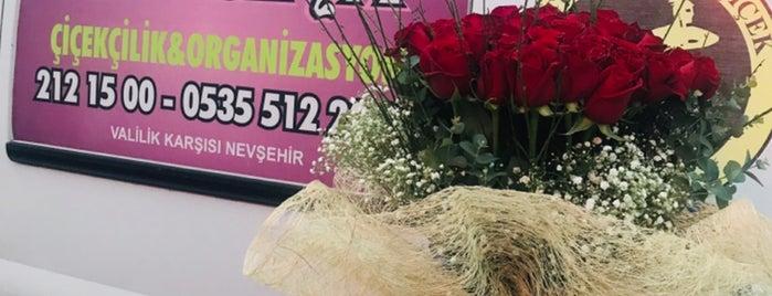 Gardenya Çiçekçilik ve Organizasyon is one of Hadiさんのお気に入りスポット.
