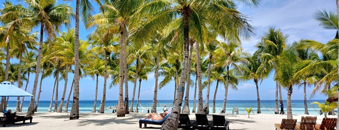 Bohol Beach Club - Beachfront is one of Tempat yang Disukai Chuck.