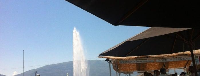 La Terrasse is one of Geneva.