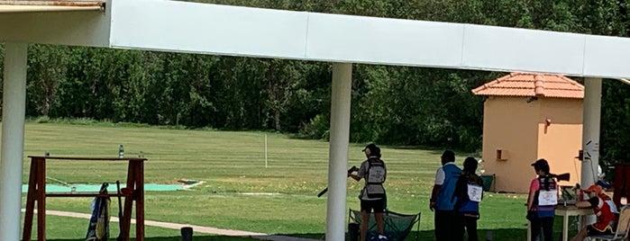 Al Ain Equestrian Shooting & Golf Club© is one of Alain.