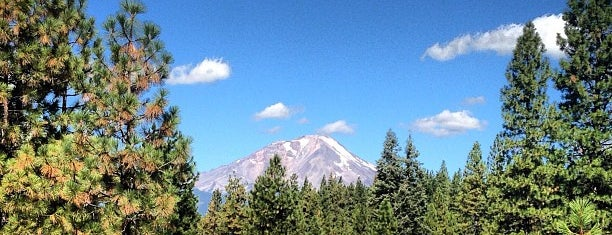Mt. Shasta is one of California - The Golden State (Northern).