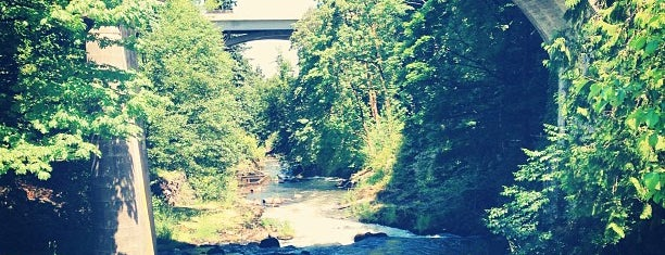Tumwater Falls Park is one of Olympia.