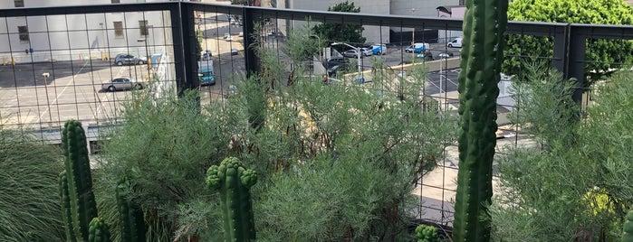 California Plaza (CPB) is one of Lugares favoritos de Dan.