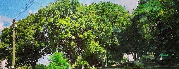 Parque Mario Trujillo is one of Joaquin'in Beğendiği Mekanlar.