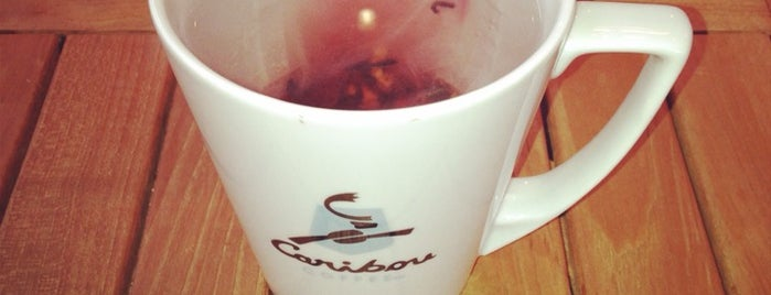 Caribou Coffee is one of Gurme 님이 좋아한 장소.