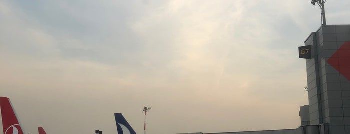 İstanbul Havalimanı (IST) is one of Posti che sono piaciuti a Gurme.