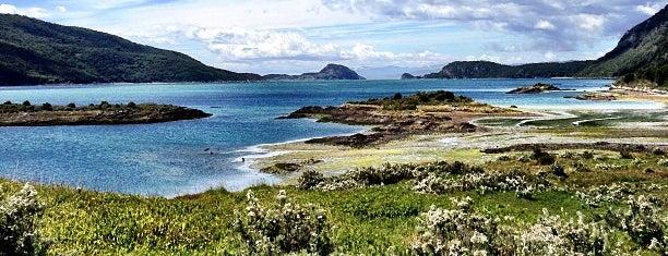 Parque Nacional Tierra del Fuego is one of Patagonia (AR).