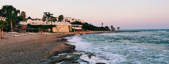 Flora Garden Beach Club is one of Lugares favoritos de Yanina.