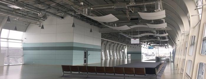 Aeropuerto Internacional de Leópolis (LWO) is one of Lugares favoritos de Yanina.