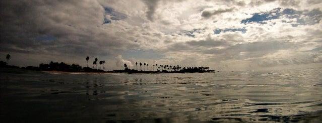 Praia do Pirui is one of Locais curtidos por Paula.