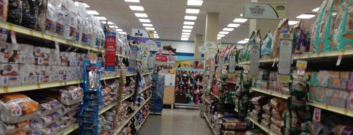 PetSmart is one of สถานที่ที่ Noemi ถูกใจ.