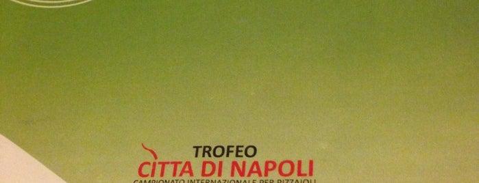Al Picchio Nero is one of Posti dove ho mangiato bene.