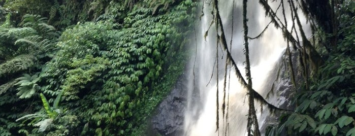 Nungnung Waterfall is one of DENPASAR - BALI.
