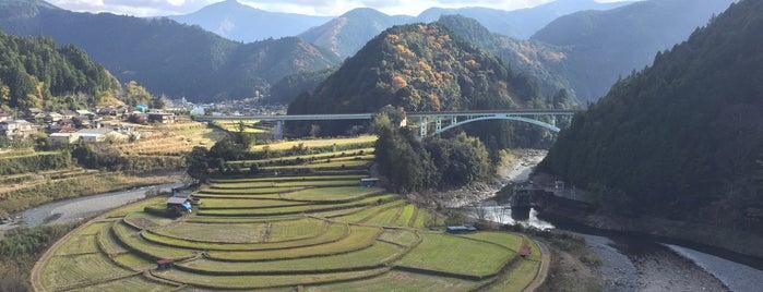 あらぎ島展望所 is one of アウトドア&景観スポット.