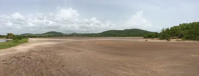 Savane des pétrifications is one of Martinique.