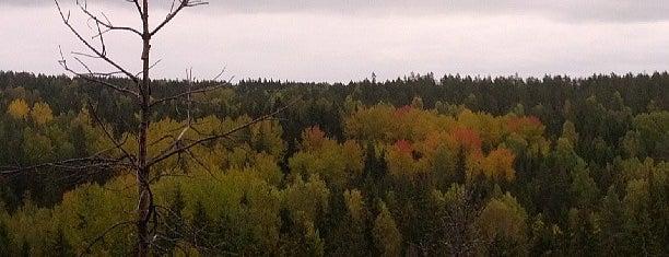 Nuuksion kansallispuisto is one of Espoo.