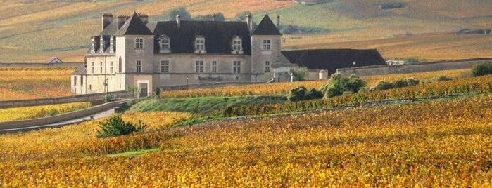 Chateau du Clos de Vougeot is one of สถานที่ที่ Ana Beatriz ถูกใจ.