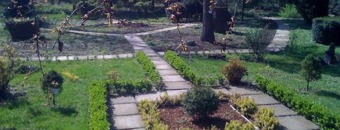 Ботанічний Сад / Botanical Garden is one of Lugares favoritos de Agatha.