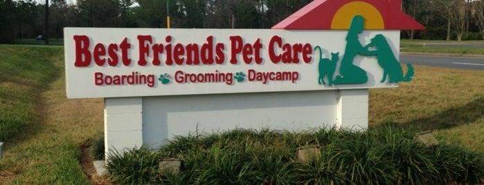 Best Friends Pet Care is one of Odele : понравившиеся места.