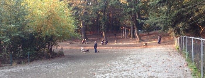 Golden Gardens Off-Leash Dog Park is one of Robby'un Beğendiği Mekanlar.