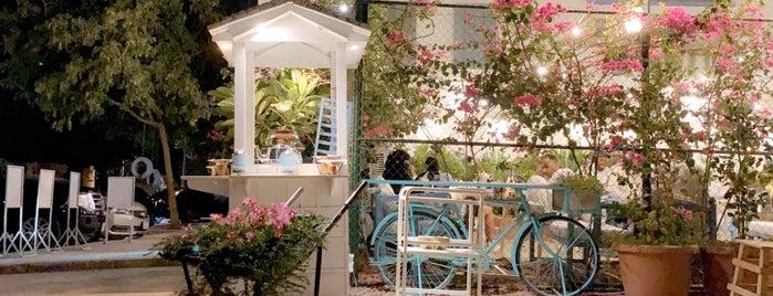 Element Specialty Coffee / Diriyah Springs is one of Queen'in Kaydettiği Mekanlar.