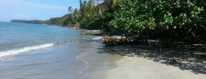 Parque Nacional Cahuita is one of COSTA RICA.