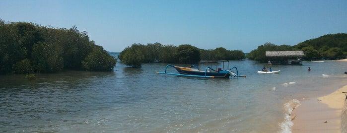 Mangrove Beach is one of Nusa Lembongan.
