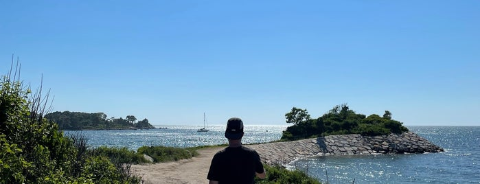 Quissett Harbor is one of Cape & Islands.