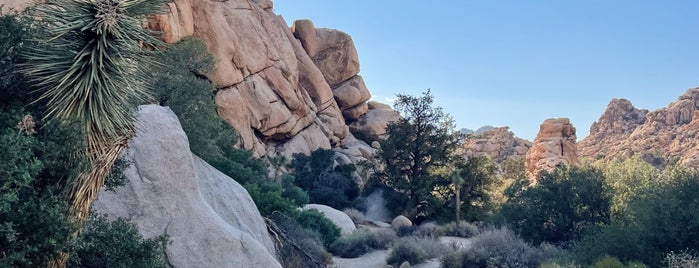 Hidden Valley Nature Trail is one of Joshua Tree.