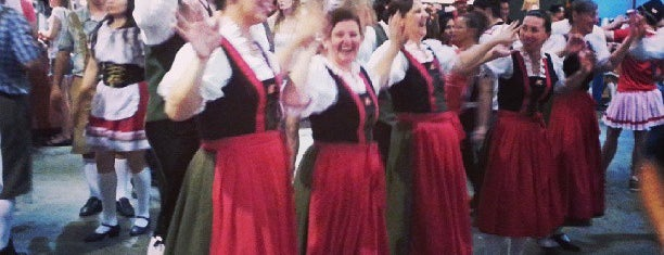 Oktoberfest Blumenau is one of Blumenau.