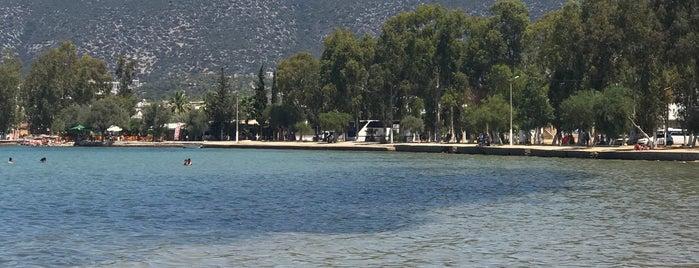 Akbük Sahil is one of Orte, die Ekrem gefallen.