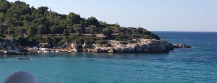 Mavi İnci is one of Tempat yang Disukai Yeliz.