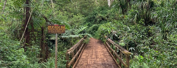 Kuilau Trail is one of Locais salvos de Chris.