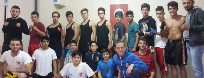 Akyazı kickboks Klubü is one of สถานที่ที่ Rıdvan ถูกใจ.