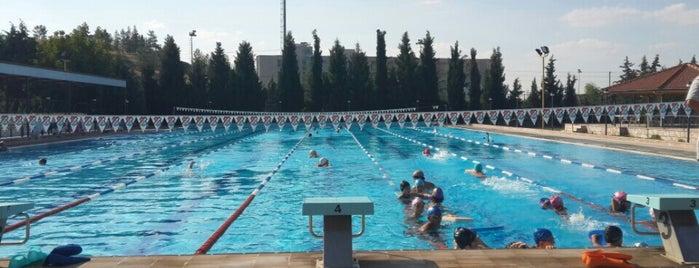Atatürk Yüzme Havuzu is one of สถานที่ที่ Özgür Yaşar ถูกใจ.