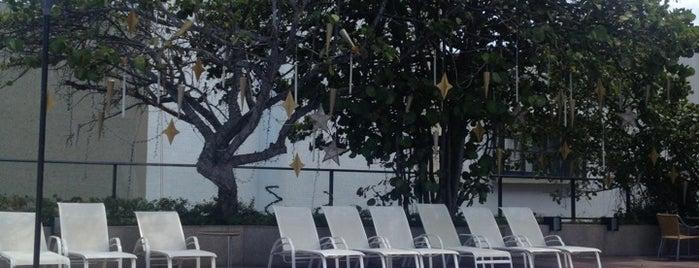 Piscina Gran Marquise Hotel is one of Lugares favoritos de J..