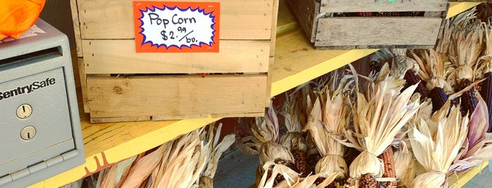 Garden of Eve is one of Hamptons North fork Vegan.