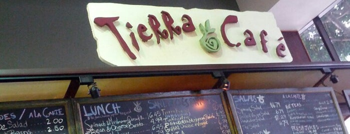 Tierra Cafe is one of DTLA local digs.